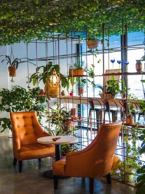 Een groot raam met decoratie van potplanten en bruin-oranje fauteuils in een jaren 70 interieur