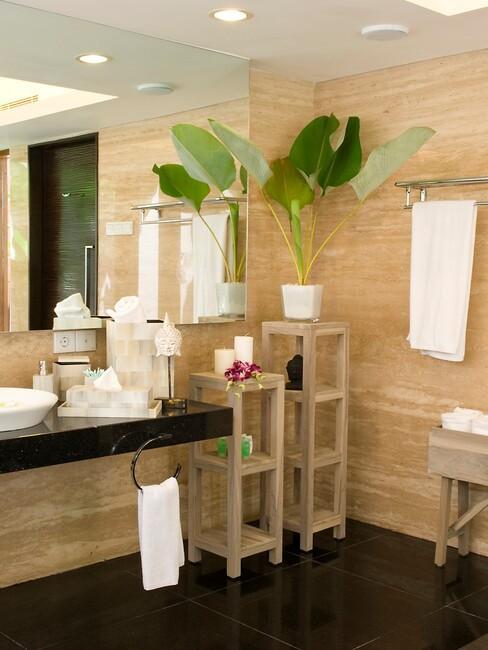hoge badkamerplant en grote spiegel in badkamer