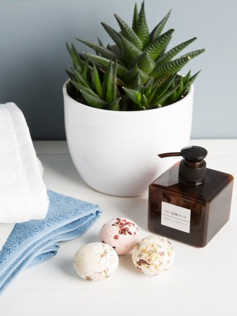 badkamer cactus