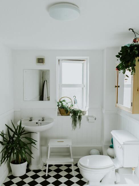 badkamer planten staand