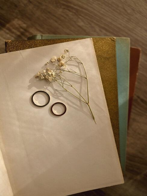 gipskruid en twee trouwringen op een boek