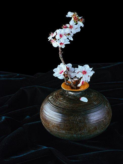 Roze bloem in zwarte vaas in Japanse stijl Ikebana