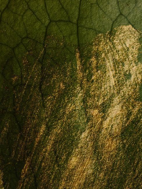 Groen-goudkleurige glitter muurverf