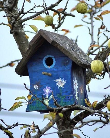 blauw vogelhuisje
