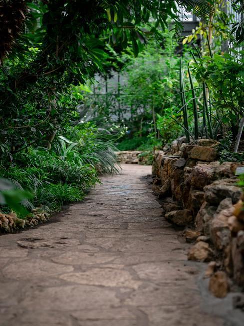 Het pad in de betegelde tuin