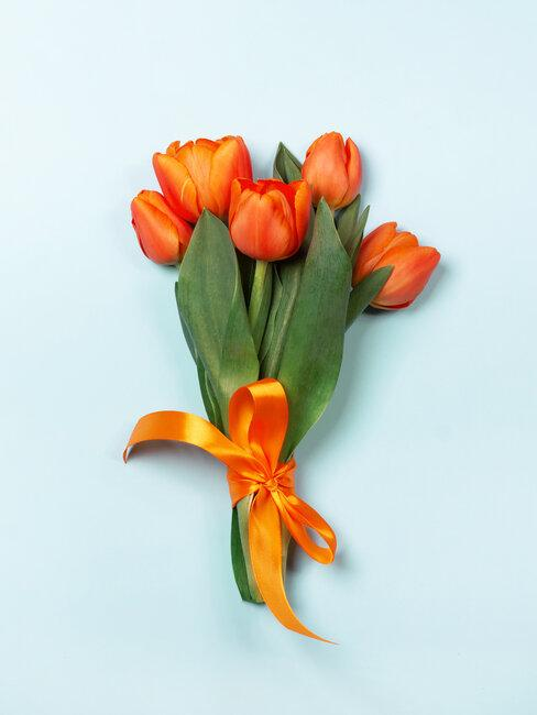oranje tulpen met strik