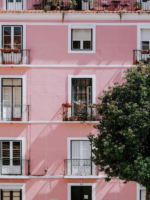 Roze gevel met frans balkon en grote boom