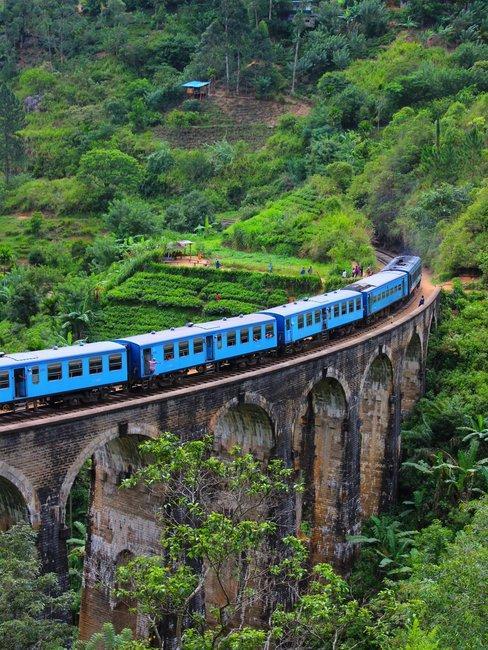 Blauwe trein op oude brug in jungle omgeving