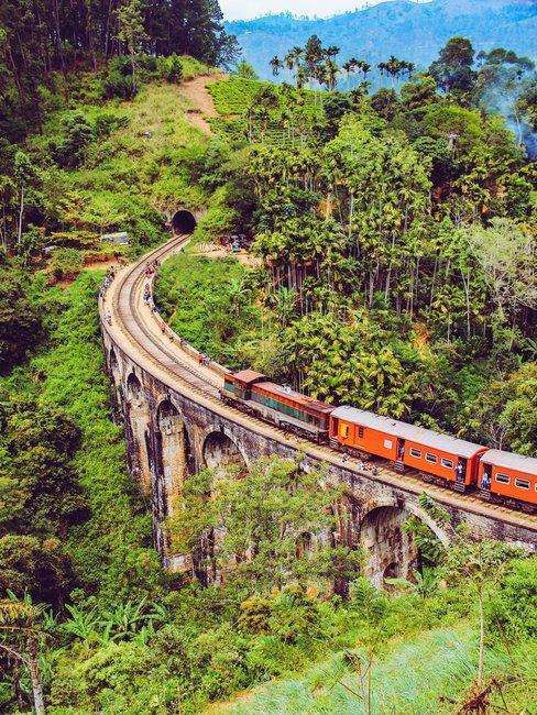 Rode trein op oude brug door de jungle