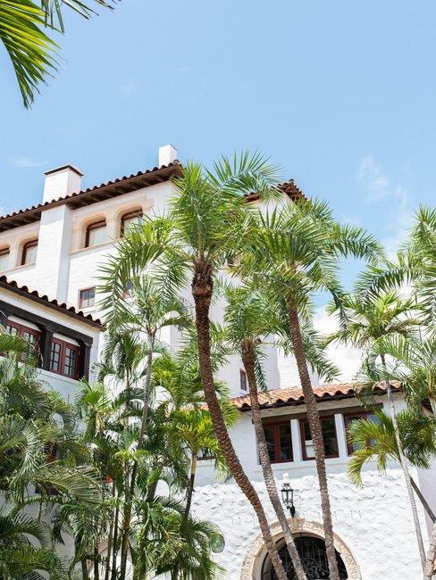 Palmbomen voor wit vakantiehuis met blauwe lucht
