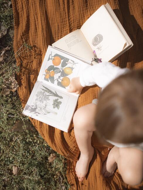 Een kind dat door een prentenboek bladert