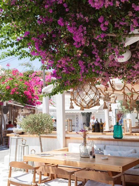 Ibiza stijl tuin met houten tafels en witte bar