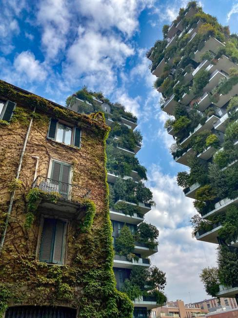grote gebouwen met groenen beplanting ertegenaan