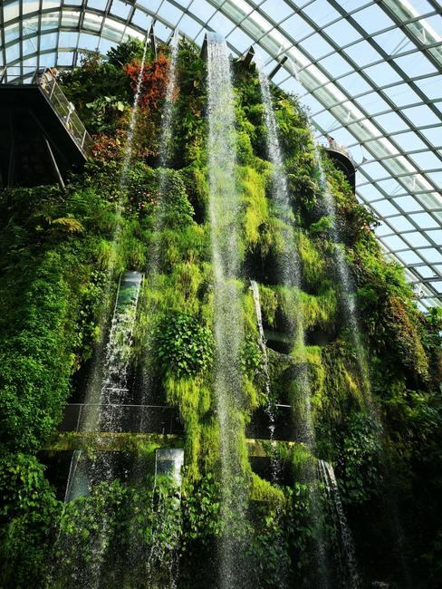 beplanting tegen een gebouw