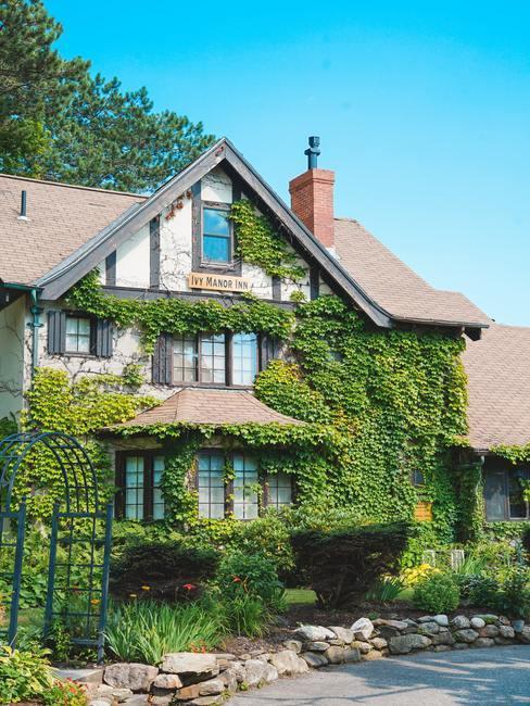 Groot huis met groene beplanting