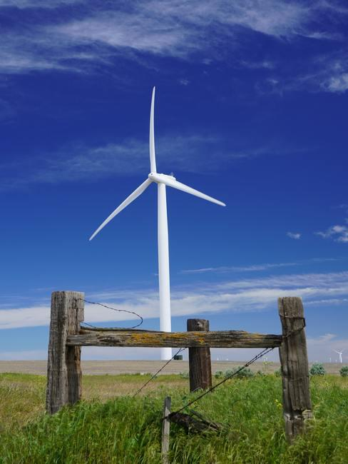 witte windmolen in een weiland