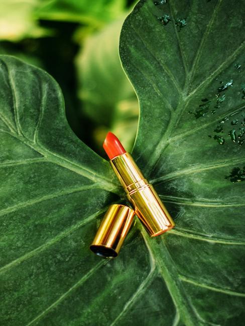 rode lippenstift op een groen blaadje