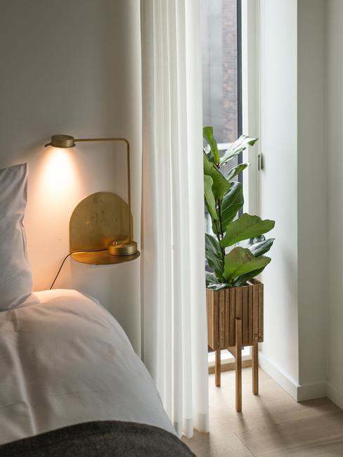 Binnenplant in een houten plantenbak