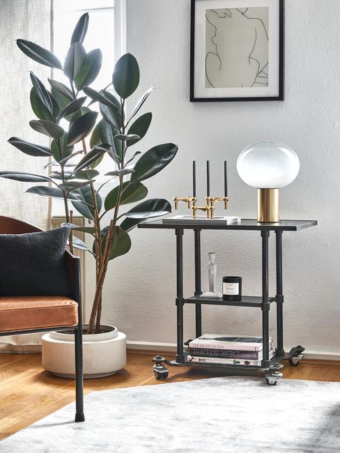 plant in witte pot met zwarte tafel en zwarte lijst
