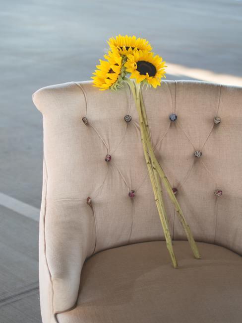 Een boeket van zonnebloemen op een crèmekleurige sofa.