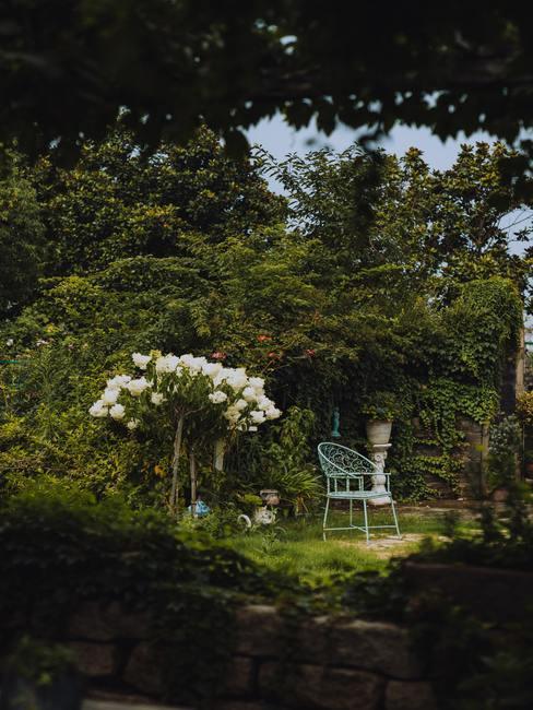 Tuin met witte stoel