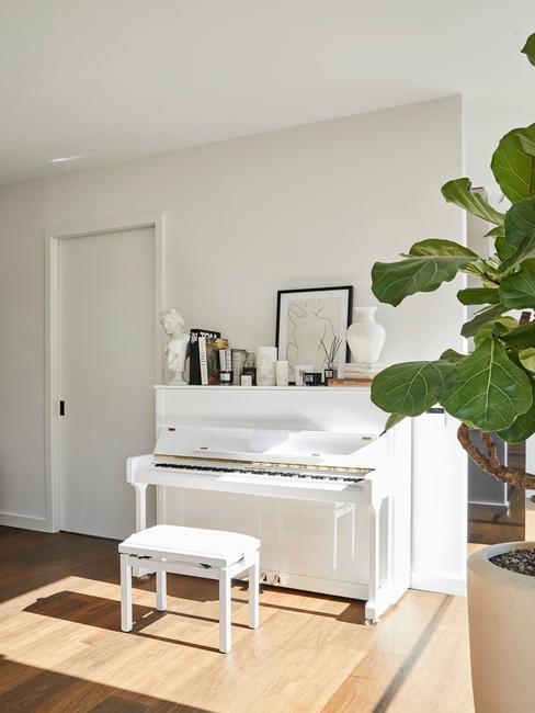 Eucalyptus-plant in de hoek naast een witte piano met een witte kruk