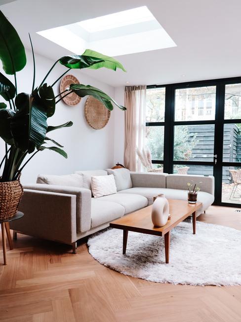 Huiskamer met strelitzia plant, lichte bank en houten bijzettafel op licht vloerkleed