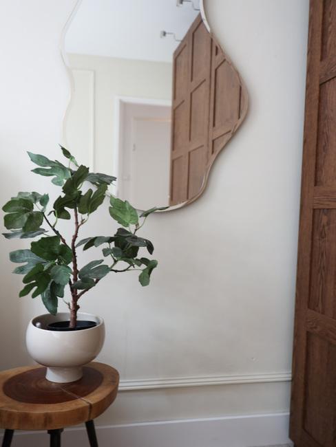 Gang met ronde organisch gevormde spiegel en plant