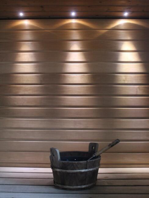 Home spa- sauna