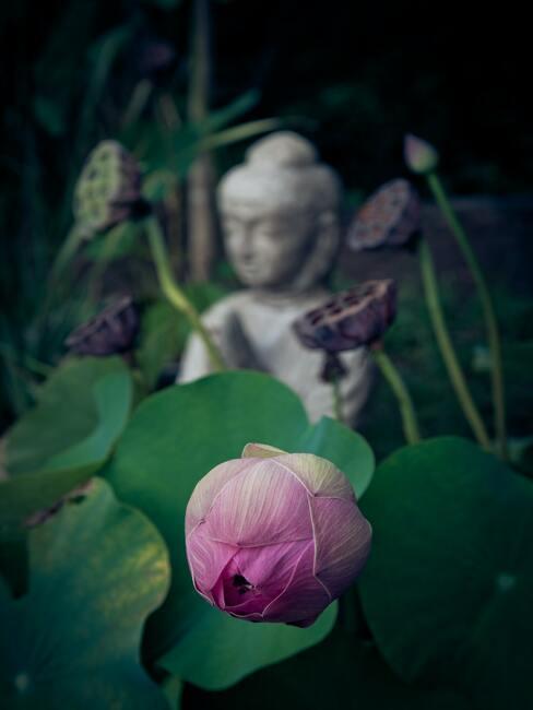 Buddha met bloemen