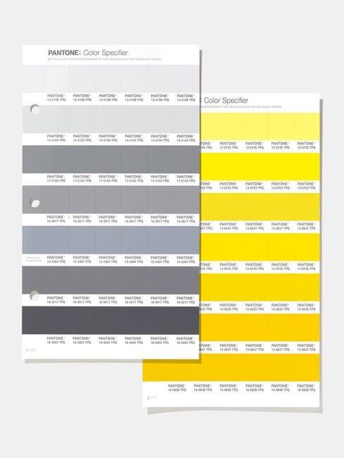 Kleurenpallet met grijs en geel