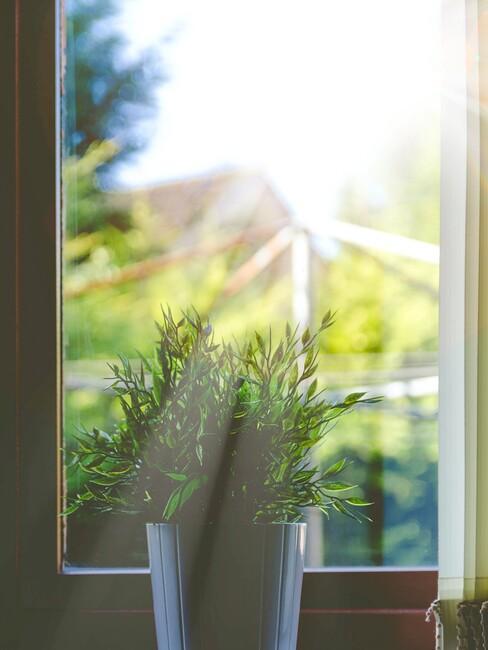 De zon schijnt door het raam naar binnen