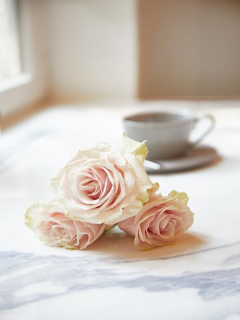Rozen op tafelkleed in wit