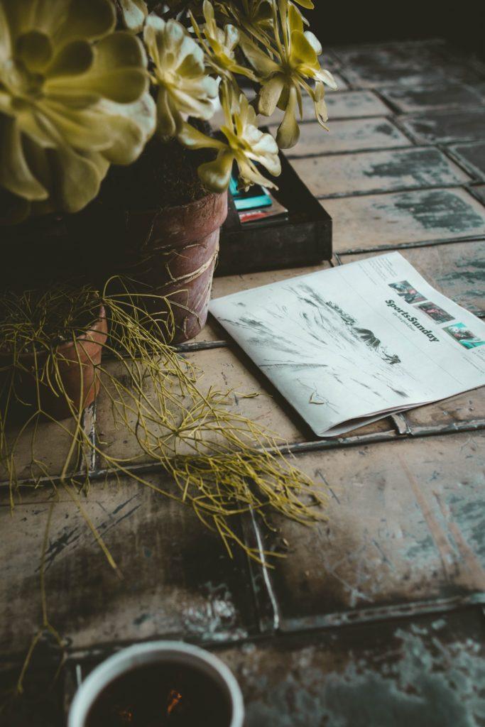 binnenplaats met planten
