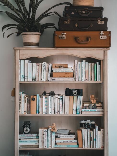 Houten boekenkast met reisboeken, fototoestellen en decoratie met bovenop een plant in pot en oude reiskoffers - Staycation