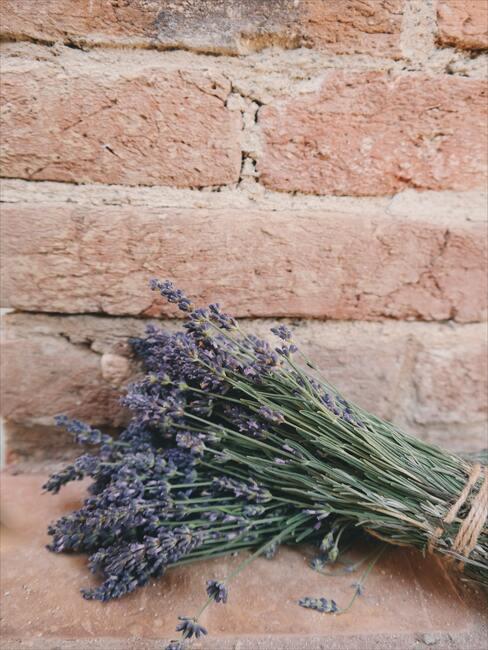 bosje lavendel op bakstenen achtergrond