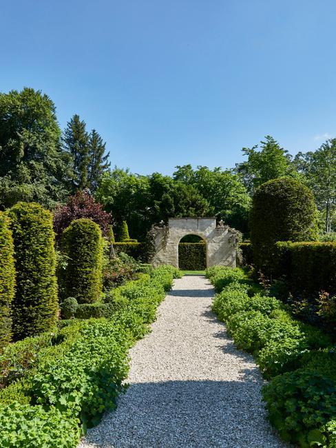 Tuin met planten en struiken