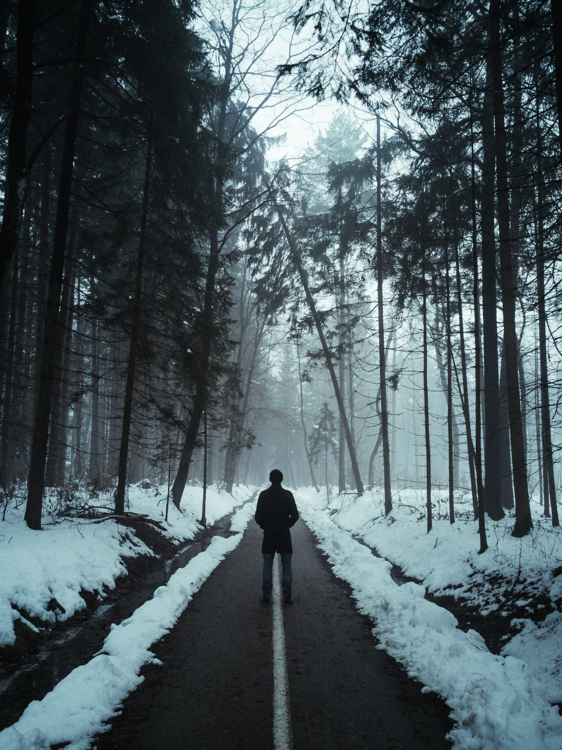 Winter blues man in woods with snow