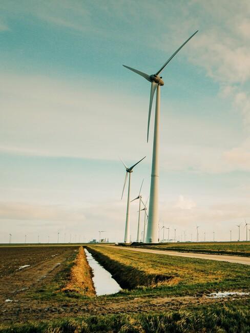 windmolen in Nederlands landschap