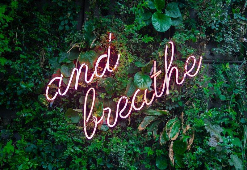 And breathe tekst op een plantenmuur