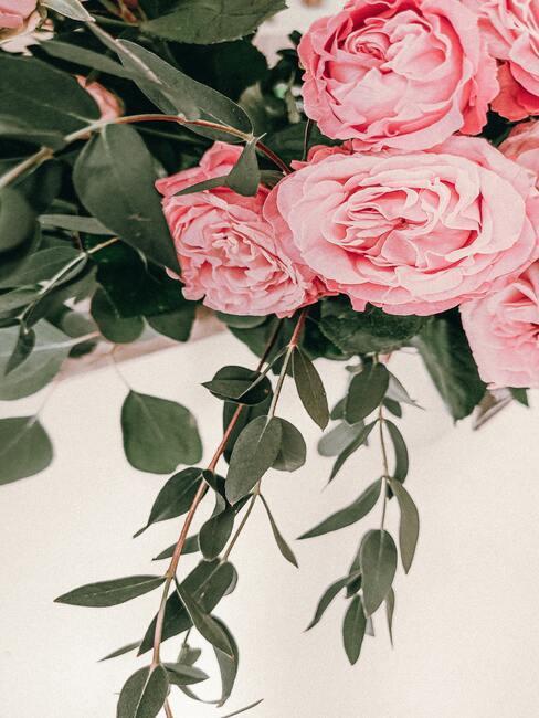 Vers gesneden bloemen