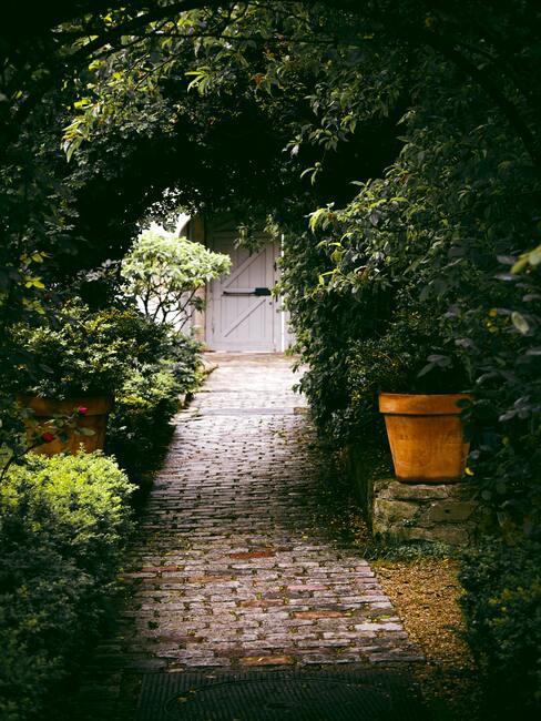 het verzorgen van de tuin na het zomerseizoen
