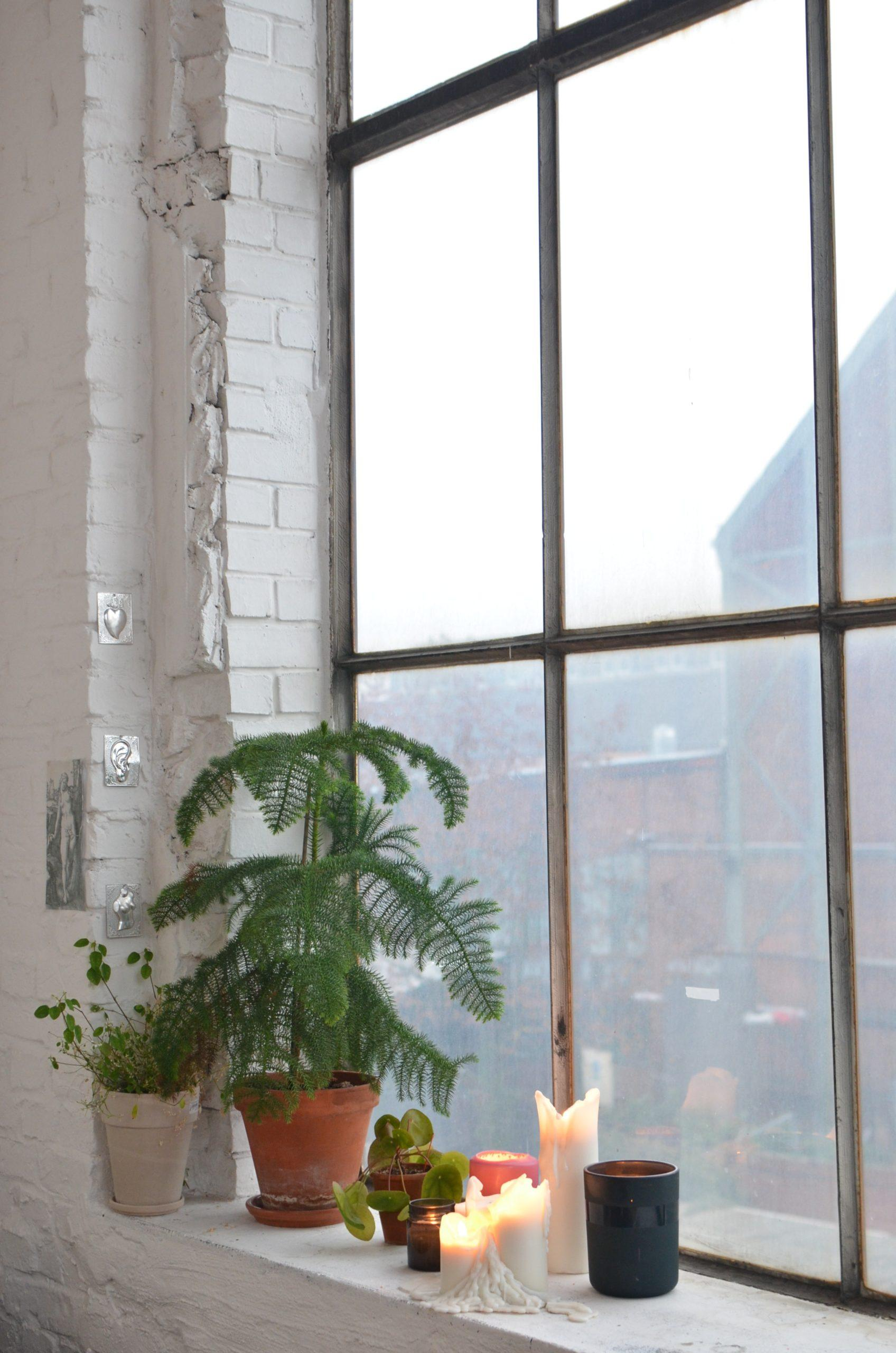 Groot raam met kerstboom