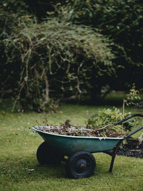 Kruiwagen met groenafval in tuin met boom op achtergrond