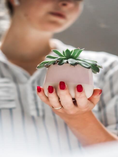 Vrouw houdt plantje in haar hand
