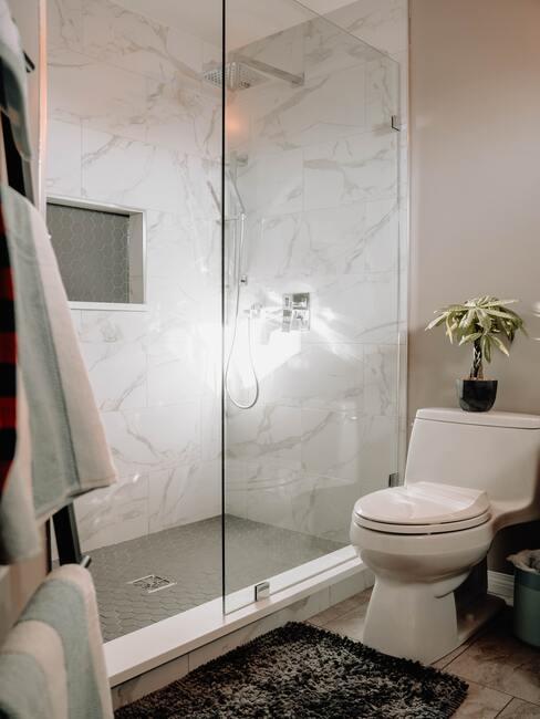 tv en glas voor douche