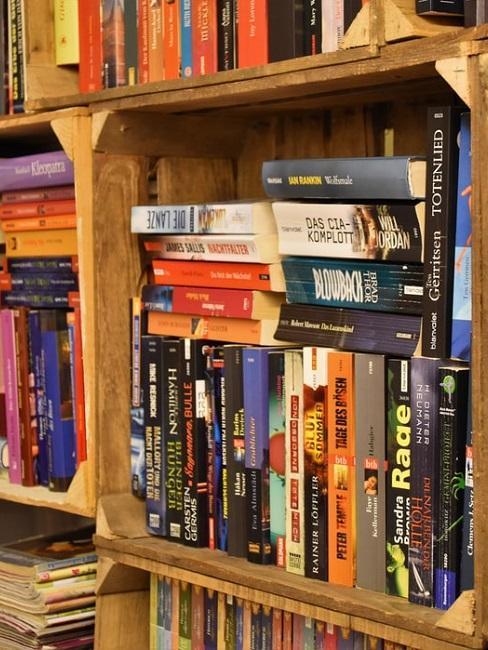 de planken staan vol met boeken
