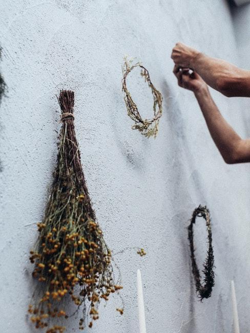 droogbloemen aan de muur