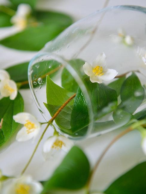 toscaanse jasmijn in een glas