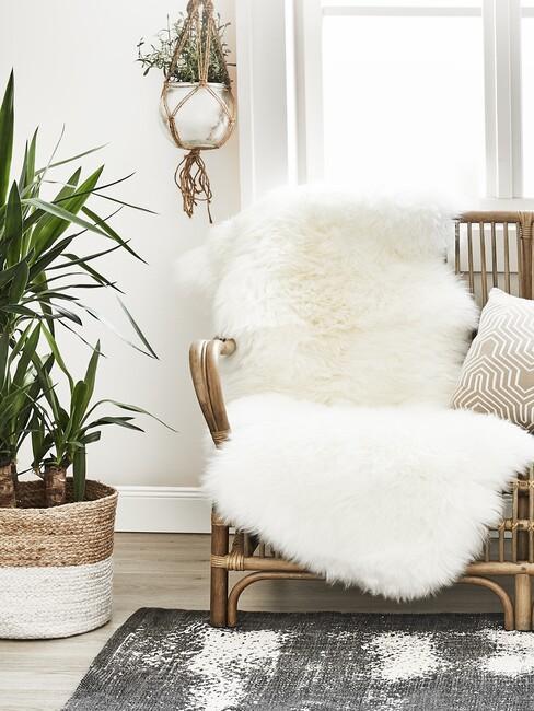 Woonkamer met licht houten vloer met rieten stoel